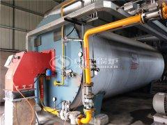 YQW燃气卧式导热油炉