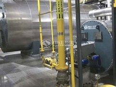 泰安燃气锅炉价格 液化气、天然气、煤气